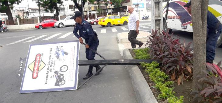 Retiran letreros instalados sin autorización en parterre regenerado